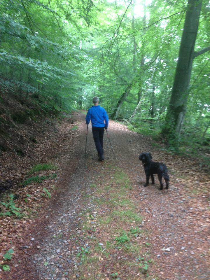 Man som går på skogsväg bort från kameran och en svart hund som tittar mot kameran